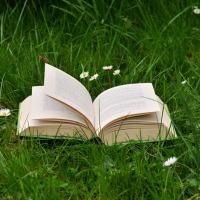 El racó de la lectura i la meditació